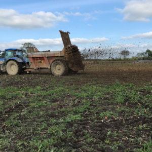 Blue tractor in field